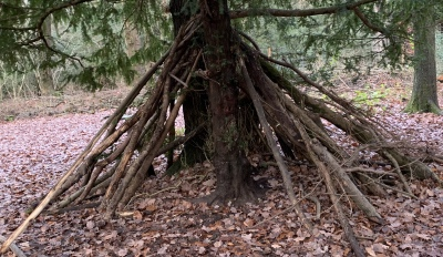 Learning in a Forest School Environment